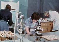 Students working in a laboratory, circa 1976
