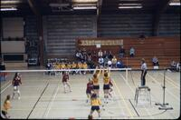 Opposing volleyball team jumping near the net, November 1977