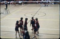 Augsburg women's volleyball team diffusing from a team huddle, November 1977
