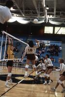 Augsburg women's volleyball team players play in a match, 1985.