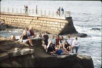 Augsburg women's basketball team take group photo on cliff near ocean, January 1992
