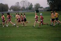 Augsburg men's cross country team runners during a race, 2002