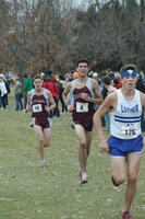 Augsburg men's cross country runners in motion in a race, 2001.