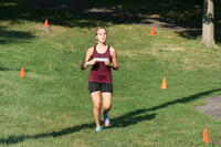 An Augsburg women's cross country team runner running in a race, 2013.