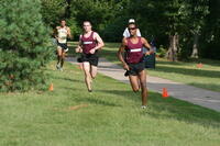 Augsburg men's cross country team runners running in a race, 2013.
