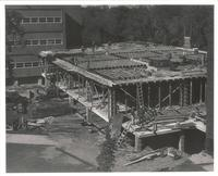 Sverdrup Hall, construction of first floor, facing northwest, 1954-1955.