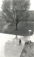 Quad, aerial view from Christensen Center, facing north, circa 1975.