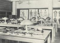 Science Hall, biology laboratory, circa 1948.