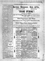 Folkebladet March 03, 1886, Page 05